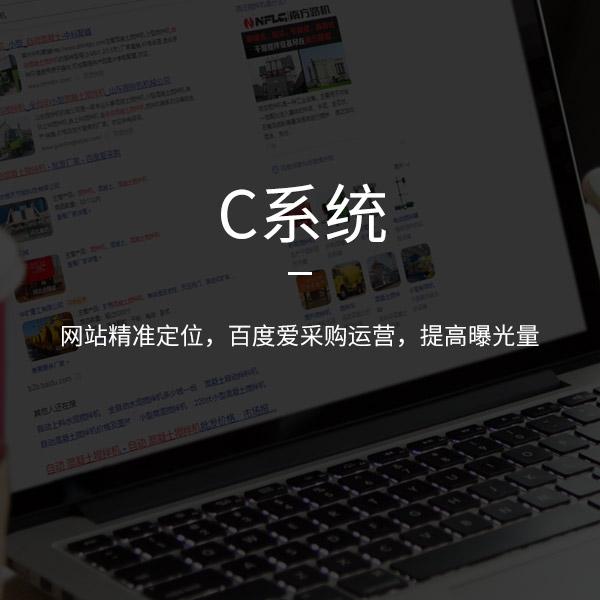 济南网站优化
